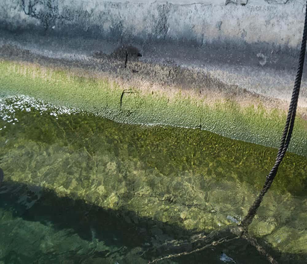 Wasser, Sabine Stange